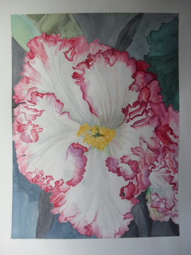arte dipinti,acquerelli